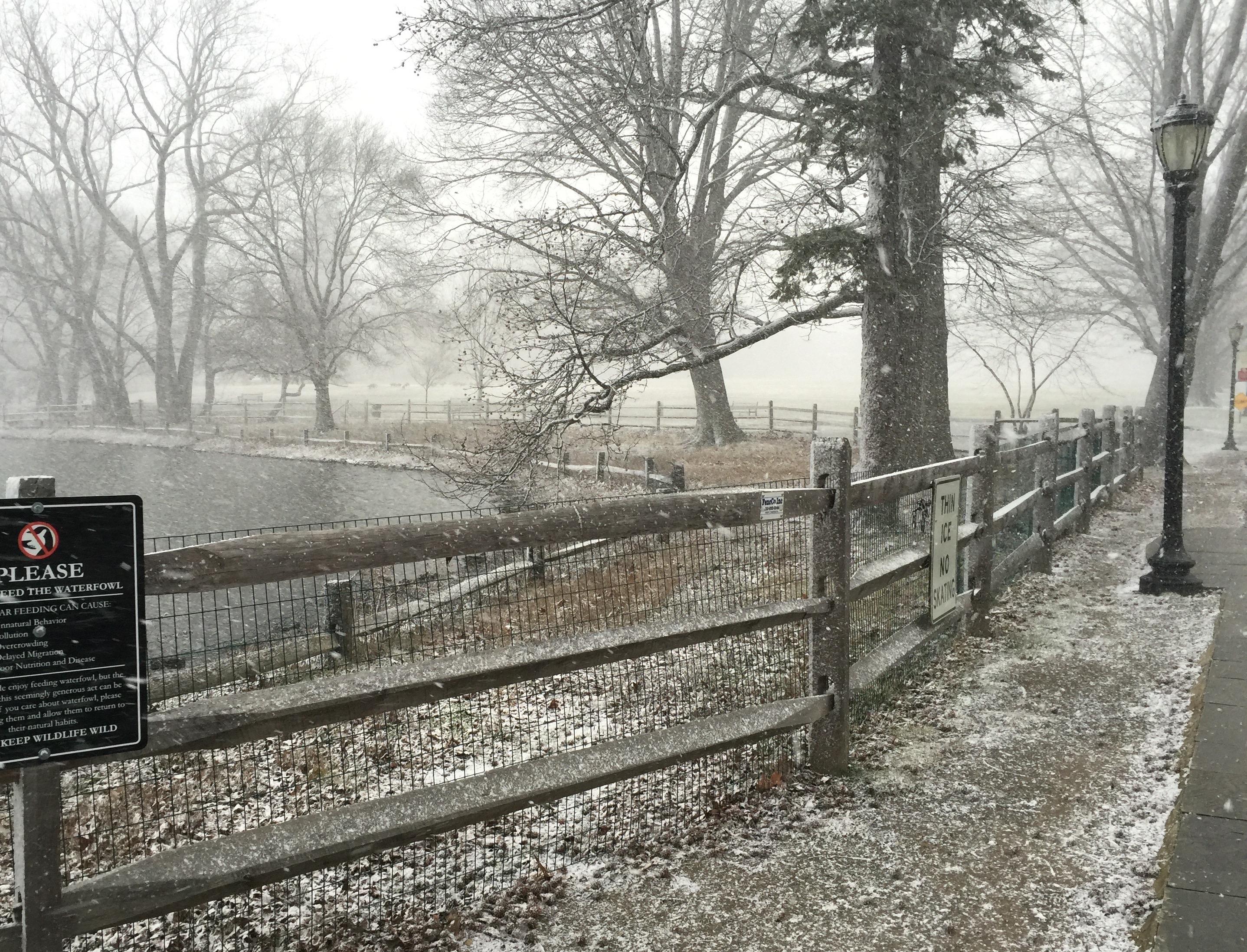 Duck Pond, Haverford College